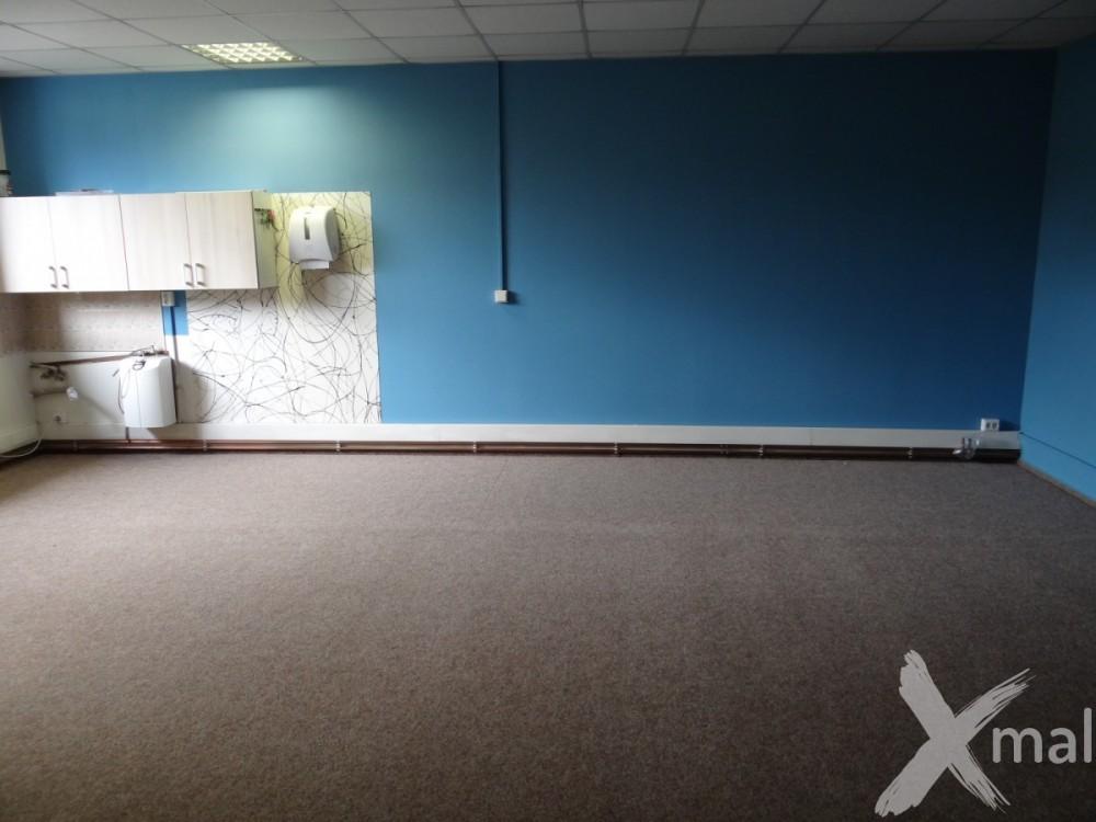 modře vymalované kanceláře