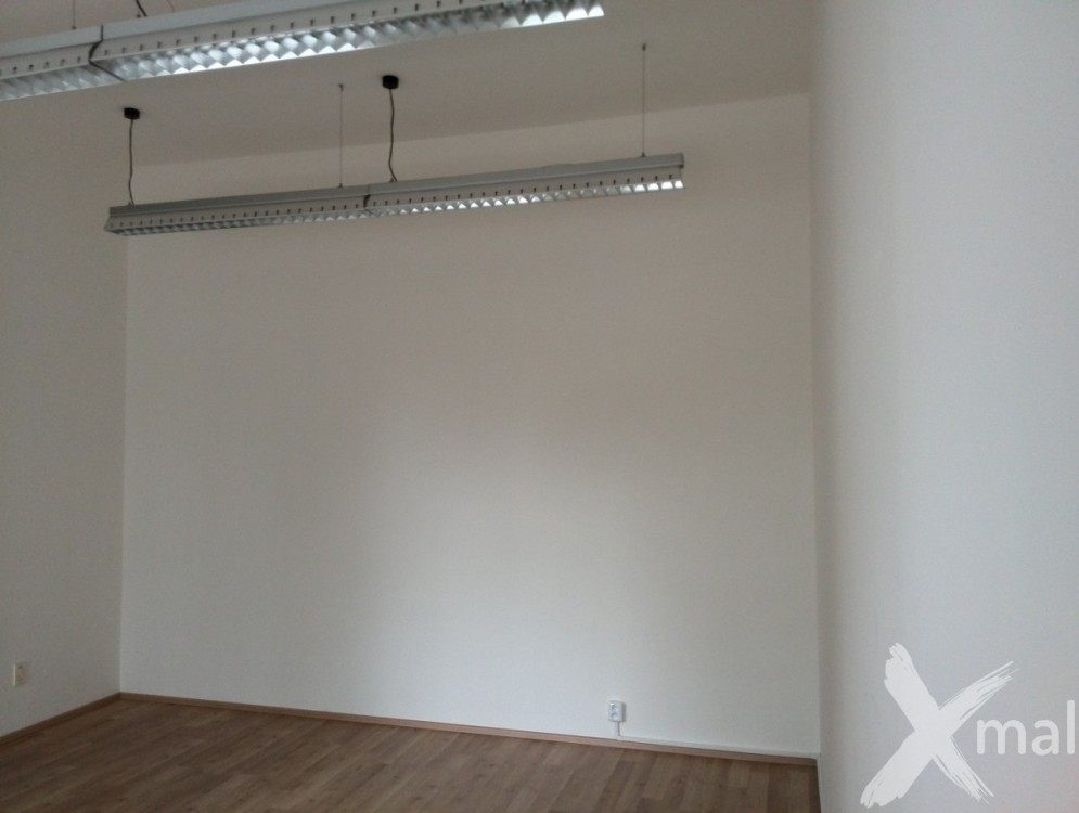 Kancelář v Plzni před malováním
